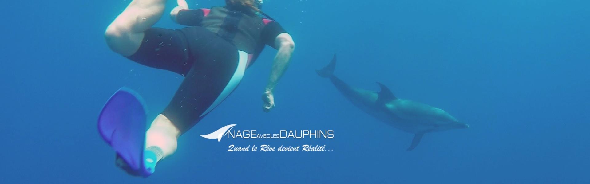 Photos de dauphins, baleines, globicéphales au large de Cannes ...